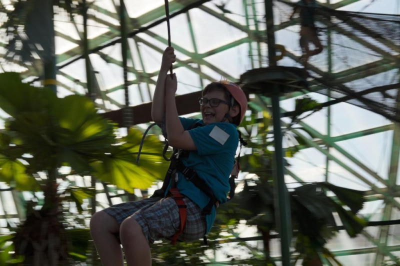 Climbing Adventure and Zip Line